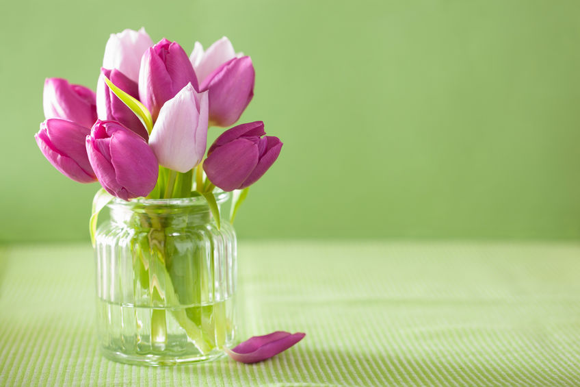 How to Make Your Flowers Last During Summer